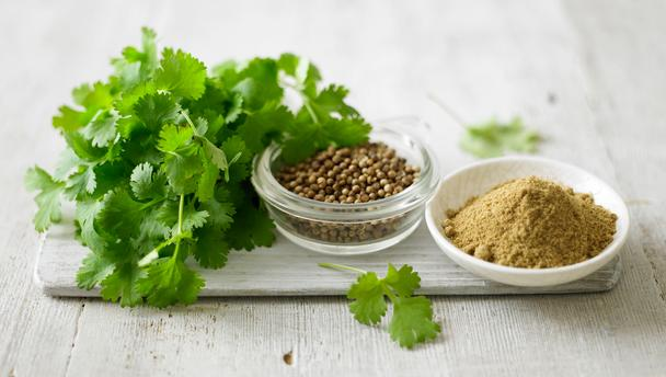 Three forms of coriander